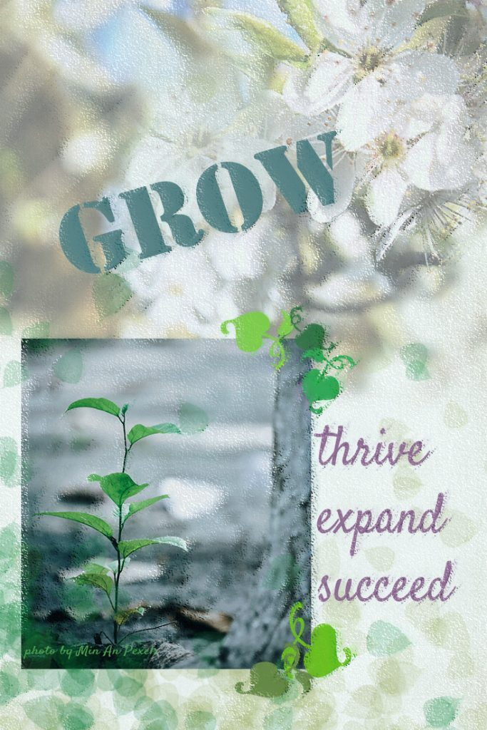 vision board collage of seedling and blossom with wording: grow, thrive, expand, succeed